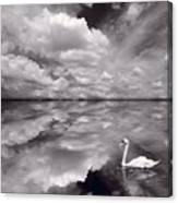 Swan Lake Explorations B W Canvas Print