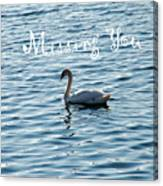 Swan Miss You Canvas Print