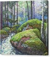 Swedish Woods Canvas Print