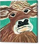 Sweet Cow Canvas Print