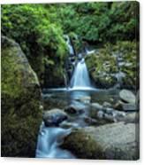 Sweet Creek Falls Vertical Canvas Print