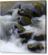 Sweet Creek Oregon 14 Canvas Print