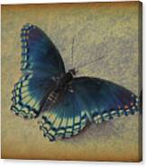 Sweet Flutterby Canvas Print