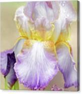 Sweet Iris Pastel Canvas Print