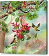 Sweet Journey  Canvas Print