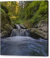 Sweet Little Waterfall Canvas Print