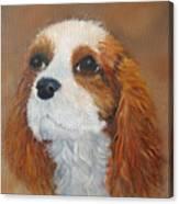 Sweet Maggie Canvas Print