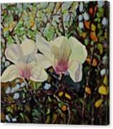Sweet Magnolias Canvas Print