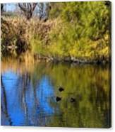 Sweetwater 8 Canvas Print