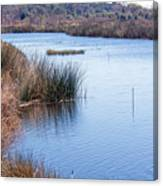 Sweetwater Wetland Pond Canvas Print