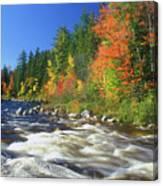 Swift River White Mountains Canvas Print