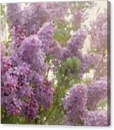 Swimming In A Sea Of Lilacs Canvas Print