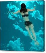Swimming In The Sky Canvas Print