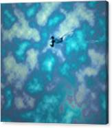 Swimming Through The Clouds Canvas Print