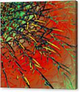 Swirl Barrel Cactus Canvas Print