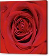 Swirling Red Silk Canvas Print