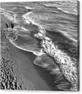 Swirls Of Black And White Canvas Print