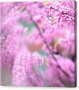 Swirls Of Spring Canvas Print