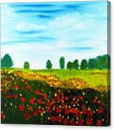 Swiss Poppies Canvas Print