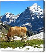 Swiss Scene Canvas Print