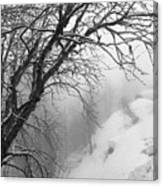 Swiss  Snow Fall Canvas Print