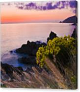Sycamore Cove After Sunset Canvas Print