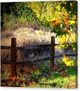Sycamore Grove Fence 1 Canvas Print