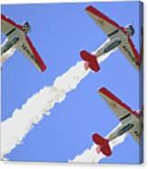 T6 Aerobatics Canvas Print