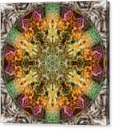 Ripstop Roulette Canvas Print
