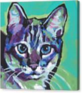 Tabby Chic Canvas Print