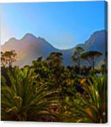 Table Mountain 1 Canvas Print