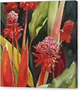 Tahiti Red Canvas Print