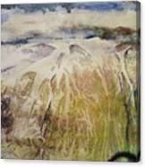Tahoe Scape Canvas Print