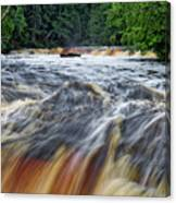 Tahquamenon Lower Falls Upper Peninsula Michigan Vertical 01 Canvas Print