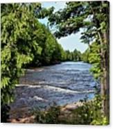 Tahquamenon River Canvas Print