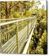 Tahune Airwalk Tasmania Canvas Print