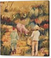 Taipei Buffalo Herder Canvas Print