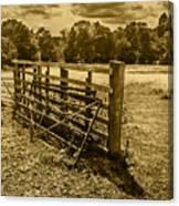 Take A Fence Canvas Print