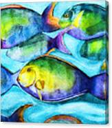 Take Care Of The Fish Canvas Print