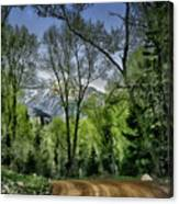 Take Me Home Country Road Canvas Print