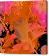Take Three Floral Abstract Canvas Print