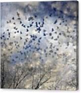 Taken Flight Canvas Print