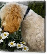 Taking Time To Smell The Flowers Canvas Print