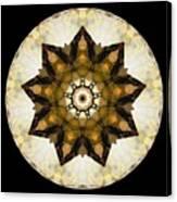 Talisman 2411 Canvas Print