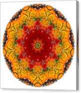 Talisman 2909 Canvas Print