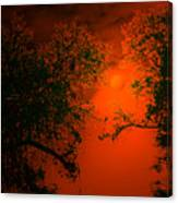Talking Trees Of Night Canvas Print