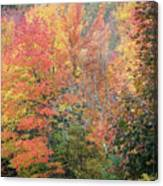 Tall And Wide Canvas Print