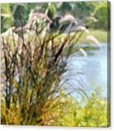 Tall Grasses Canvas Print