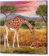 Tall Love From Above Canvas Print