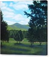 Tall Pines Surround Your Green Hills Canvas Print